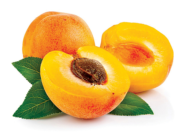apricot-oil-for-hair-large